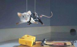 7 Foto Tikus Lucu dan Menggemaskan, Jadi Pengen Punya Deh !