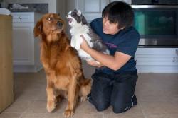 10 Foto Bukti Kalau Anjing dan Kucing Itu Susah Banget Buat Akur