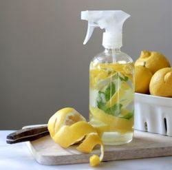 7 Kegunaan Lemon Dalam Kehidupan Sehari-Hari