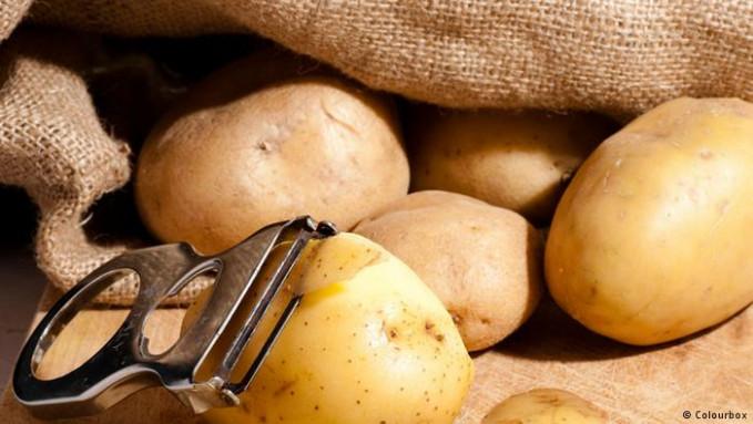 Studi yang dilakukan oleh Universitas Harvard, menyebutkan jika kentang mengandung pati yang tinggi. Jika terlalu banyak makan akan meningkatkan lemak. Resikonya, berat tubuh bertambah jika disajikan bersama mentega.