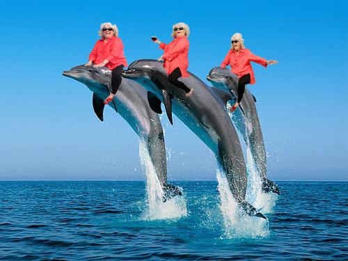 Niatnya si cucu mau bikin surprise buat si nenek, alhasil dibikinlah foto yang super gokil kayak gini.