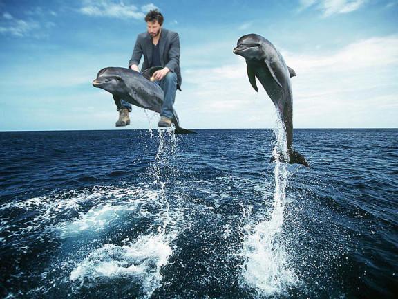 Sensasi baru membaca di atas punggung ikan lumba-lumba. Apa bisa konsen tuh?.