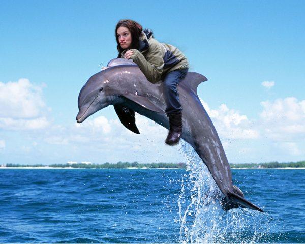Menikmati banget nih si mbaknya naik di punggung lumba-lumbanya?. Kesampaian juga deh cita-citanya.