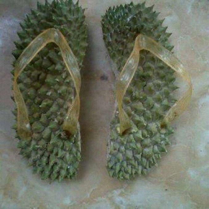 Ada yang berani pakai sandal terapi dari kulit durian ini?.