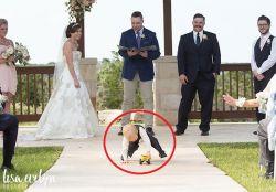 10 Ekspresi Kepolosan Balita di Resepsi Pernikahan yang Gemesin, Namanya Juga Anak-Anak