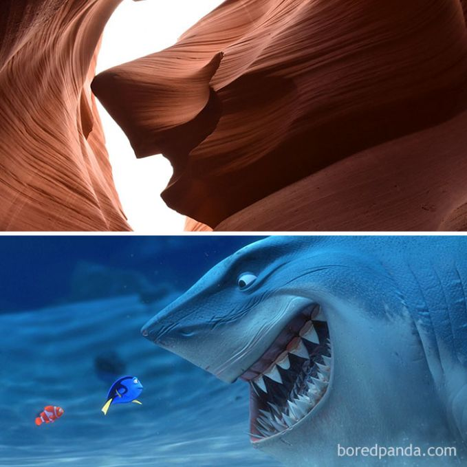 Saat karakter hiu dalam film Finding Nimo berada di daratan, ini penampakannya.