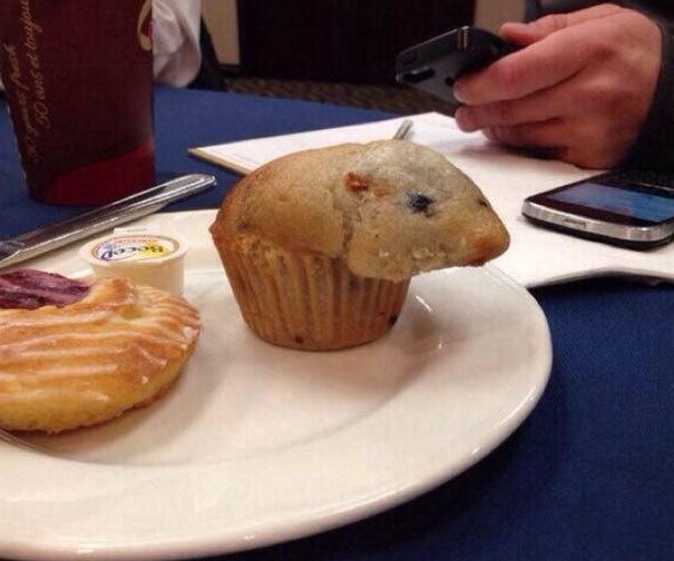 Kalau bentuk cupcakenya seperti ini, apa kamu masih mau memakannya?
