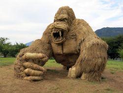 Awas, Ada 'Monster Jerami' Menginvasi Ladang di Jepang Saat Musim Panen Tiba