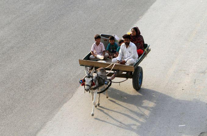 Pakistan Walaupun sudah modern, tapi di Pakistan masih banyak pekerja yang menggunakan angkutan yang ditarik keledai seperti ini.