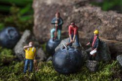 Tampak Nyata, 10 Miniatur Keren Ini Hasil Kreasi Benda Sekitar Kita