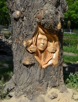 Mengagumkan, Seniman Rumania Ini Sulap Sisa Tebangan Pohon Jadi Patung Keren