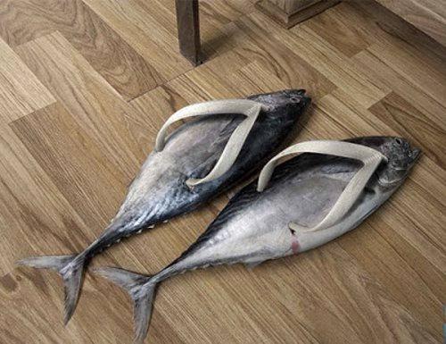 Waduh, ada sandal ikan Pulsker. Hati-hati dibawa kabur sama kucing lho karena bentuknya yang menggoda.