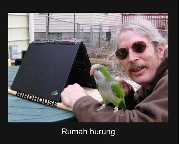 Bapak yang satu ini mulia sekali ya gaes. Sampai rela laptopnya dipakai buat rumah burung.