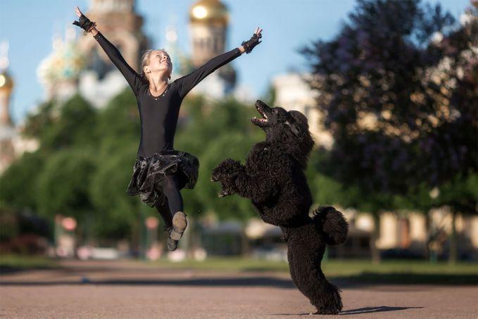 Wah, si anjing sebenarnya pengen lompat setinggi sang balerina. Tapi apa daya nih, nggak mampu lompat setinggi itu.