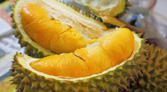Durian Buat sebagian orang Indonesia, durian adalah buah surga yang sangat lezat rasanya. Namun, karena baunya yang menyengat serta teksturnya yang lembek, membuat bule malas mau mendekati buah ini.