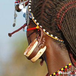 7 Tindik Telinga Wanita Ekstrim, Jadi Ngilu Ngeliatnya
