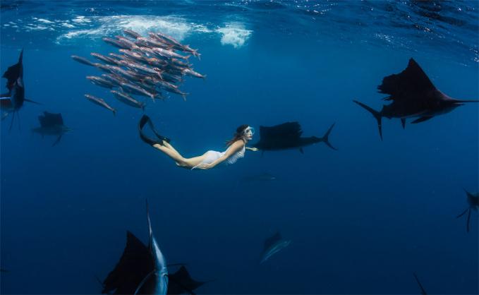 Karena mengambil foto bawah air bukan hal yang mudah lho. Apalagi ditemani ikan-ikan yang sewaktu-waktu bisa menyerang.
