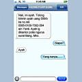 10 Jawaban Kocak SMS Penipuan yang Bikin Kamu Tersenyum Kecut!