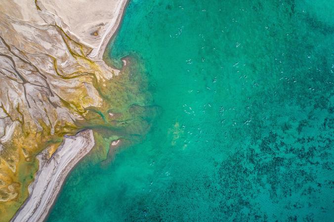 Segerombolan ikan-ikan laut yang tertangkap dalam bidikan kamera Florian Ledoux.
