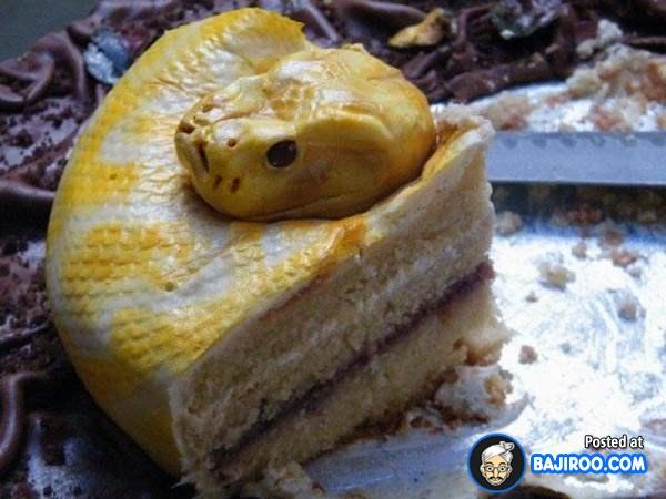 Pasti dari jauh ngeliatnya geli-geli gimana gitu, eh pas dideketin ternyata ularnya kue tart.
