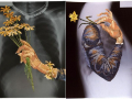 Bukan Sekedar untuk Keperluan Medis, Foto X-Ray Juga Bisa Jadi Benda Seni Artistik
