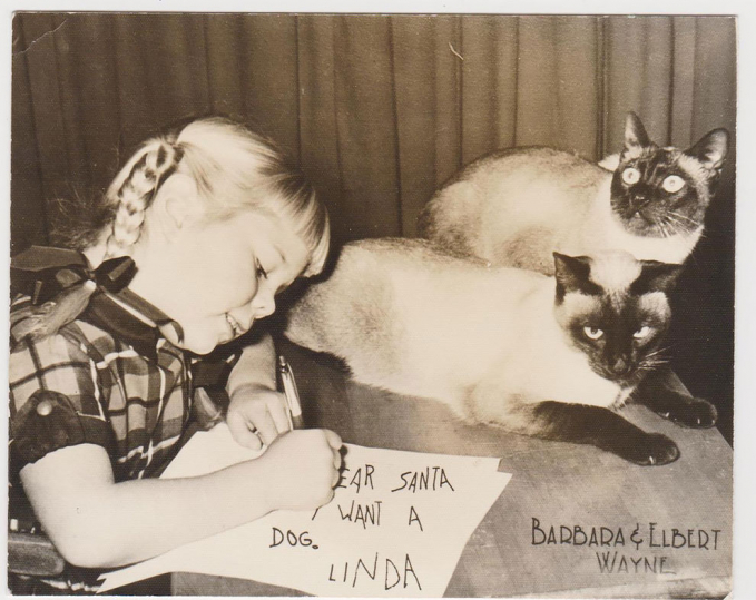 Seorang gadis kecil bernama Linda ini menginginkan seekor anjing dari Sinterklas di hari Natal.