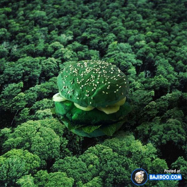 Tema lingkungan hijau cocok buat kalian yang vegetarian.