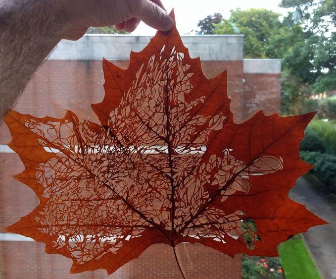 Gimana, keren kan Pulsker?. Nggak nyangka kan kalau daun kering sekitar kita bisa jadi benda bernilai seni tinggi.