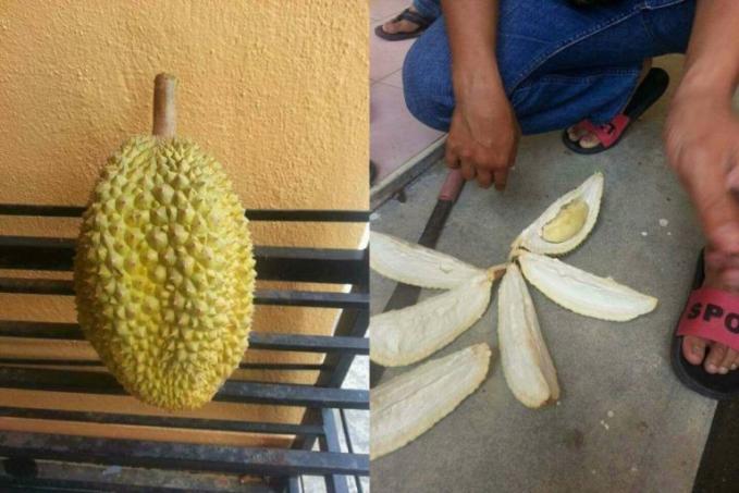 Ini yang sempat viral, jadi pria ini beli durian seharga 15k, tapi ternyata ini yang ia dapatkan.. emang bener ya..ada harga ada rupa :d