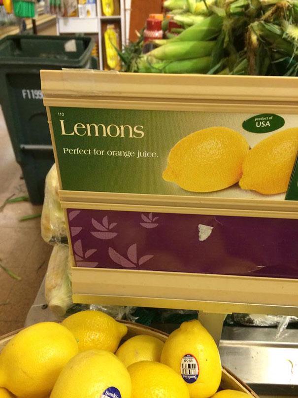 Baru tau kalau buah lemon bisa dibuat orange jus.