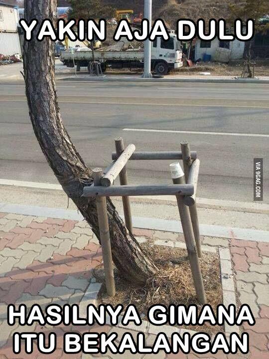 Walaupun akhirnya pohonnya tumbuh di luar, yang penting dulunya yakin aja dulu.