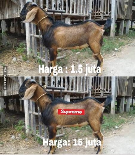For sale, kambing merk Supreme.. limited edition.