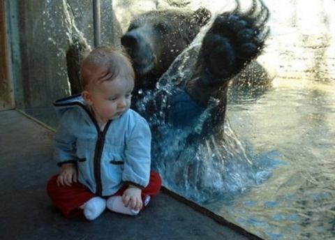 Untung aja ada kaca, kalo nggak udah habis nih di peluk beruang.