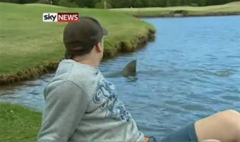 Bahkan hiu juga pernah terlihat di dekat lapangan golf di Australia lho! Ngeri juga ya..