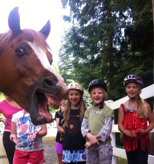 Kuda juga pengen ikutan foto nih bareng anak-anak pas lagi liburan. Biar makin seru gitu.