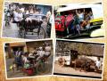 Potret Miris 'Bus Sekolah' di India, Mulai dari Gerobak sampai Bajaj Butut