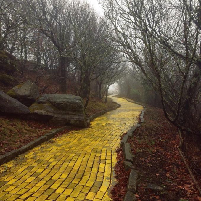 Walaupun ini jalan setapak, tapi aura suram dan menyeramkannya sangat terasa ya?! Ini adalah salah satu taman bermain Land of Oz, North Carolina, AS.
