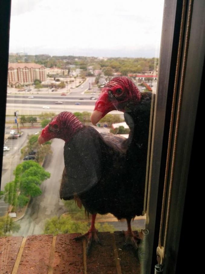 Hayoo, ketahuan nih mojok berdua di pinggir jendela.
