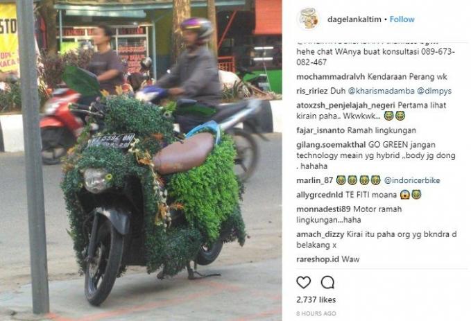 Di Indonesia juga nggak mau kalah. Motor matic ini pun jadi pot untuk berbagai macam tanaman.