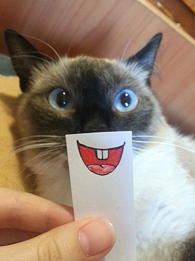 Jangan lupa senyum hari ini ya Pulsker.