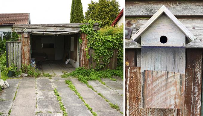 Bahkan di garasi mobil rumah kosong pun dibuatin rumah lho burung-burung liarnya.