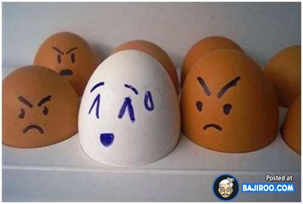 Wah, kawannya pada ngiri tuh gengs ngeliat telur putihnya beda sendiri dari yang lain.