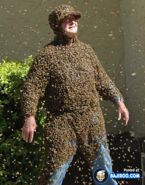 Dikerubutin satu ekor lebah aja bingungnya bukan main, gimana kalau jumlahnya ribuan gini ya Pulsker?.