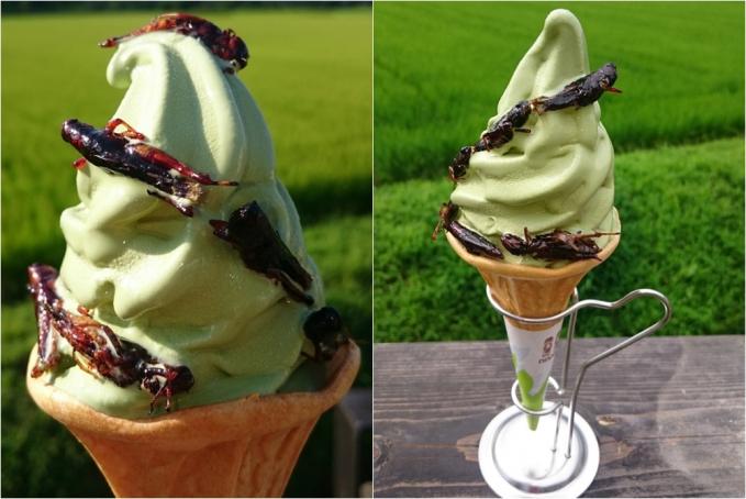 Eskrim dengan toping belalang Yang terakhir juga dari Jepang, yaitu eskrim dengan toping belakang. Kamu akan menikmati sensasi kriuk-kriuk ketika menyantap eskrim yang satu ini.