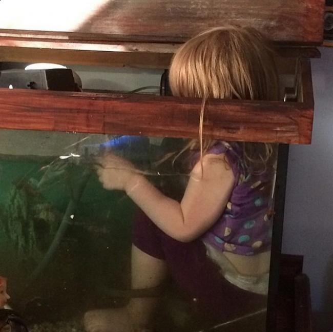 Aku sedang membetulkan pipa yang rusak di dalam aquarium ini