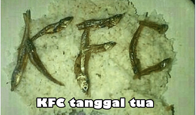 Makan KFC paket ikan teri.