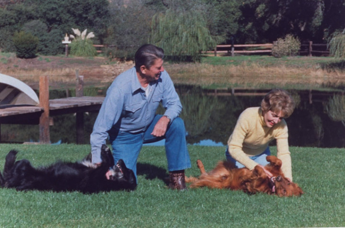 Sementara itu Presiden Ronald Reagan punya beberapa anjing di pekarangan luasnya di California Pulsker. Diantaranya adalah anjing yang bernama Rex dan Lucky. Nampak dalam foto ini Reagan bermain-main bersama anjing dan keluarganya tahun 1982 silam.