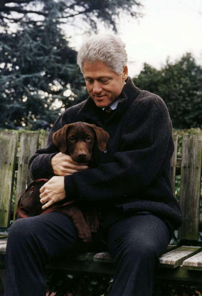 Sedangkan Presiden Bill Clinton saat menjabat sebagai presiden memiliki beberapa ekor kucing dan anjing. Salah satu kesyangannya adalah anjing bernama Buddy ini.
