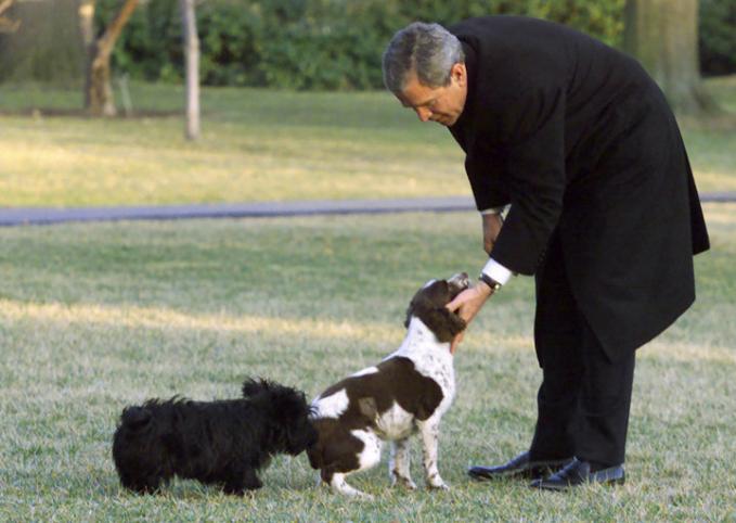 Sama dengan ayahnya, Bush Senior presiden George W. Bush alias Bush Junior juga suka memelihara anjing. Diantaranya bernama Barney dan Spot yang merupakan anak dari anjing ayahnya si Mille.