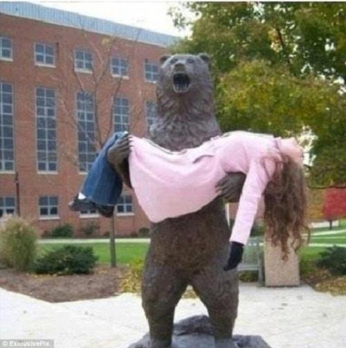 Si beruangnya terlihat histeris saat mengangkat seorang wanita dihadapannya.